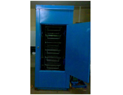 Conveyorized Curing Oven